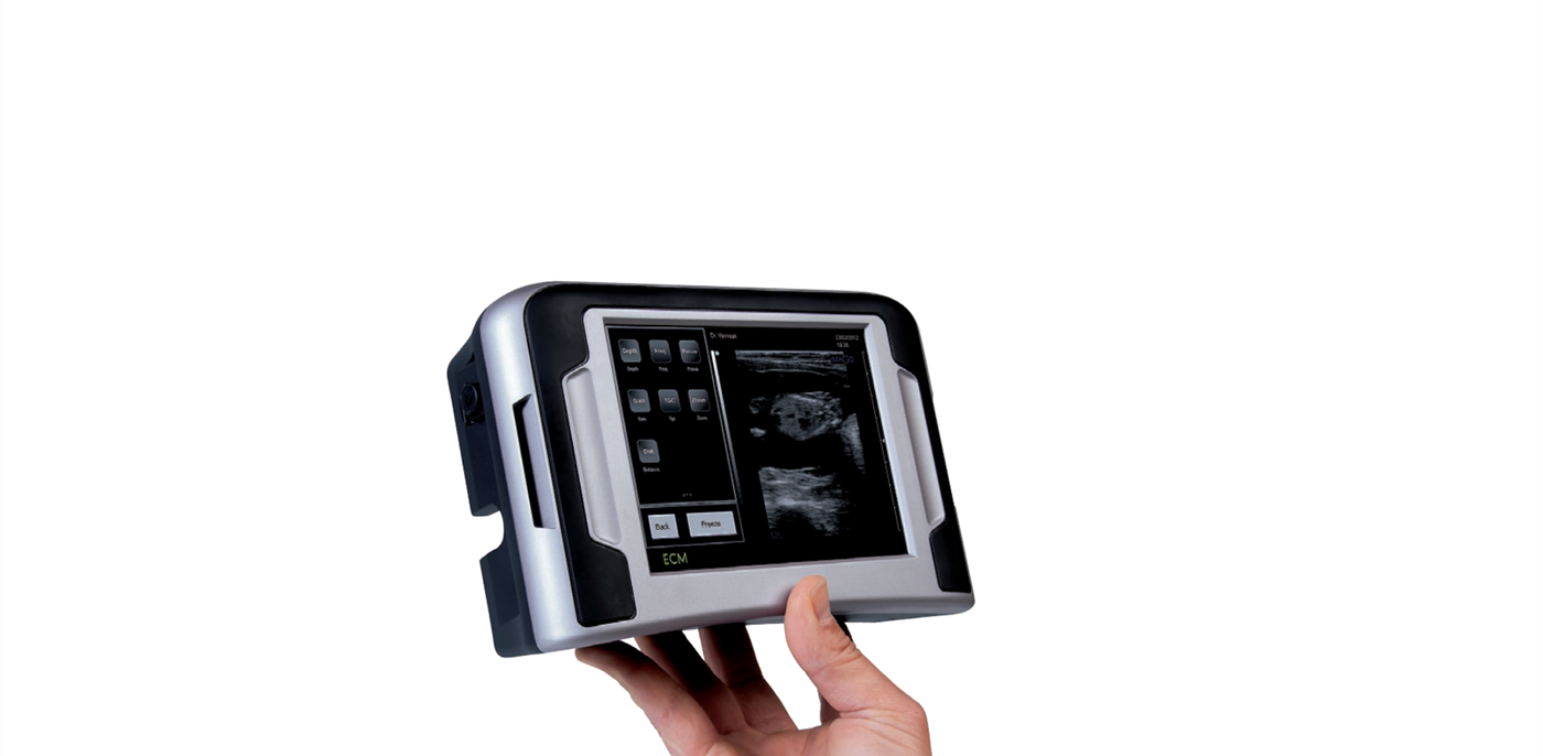 ImaGo - Sow ultrasound scanner in hand